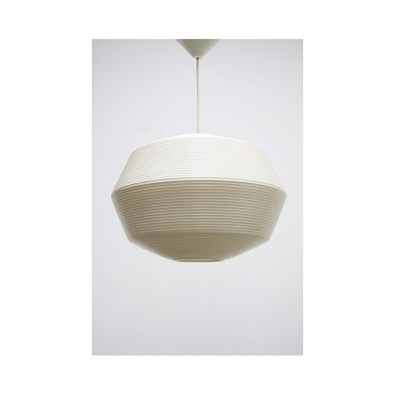 Plastic ball hanging lamp